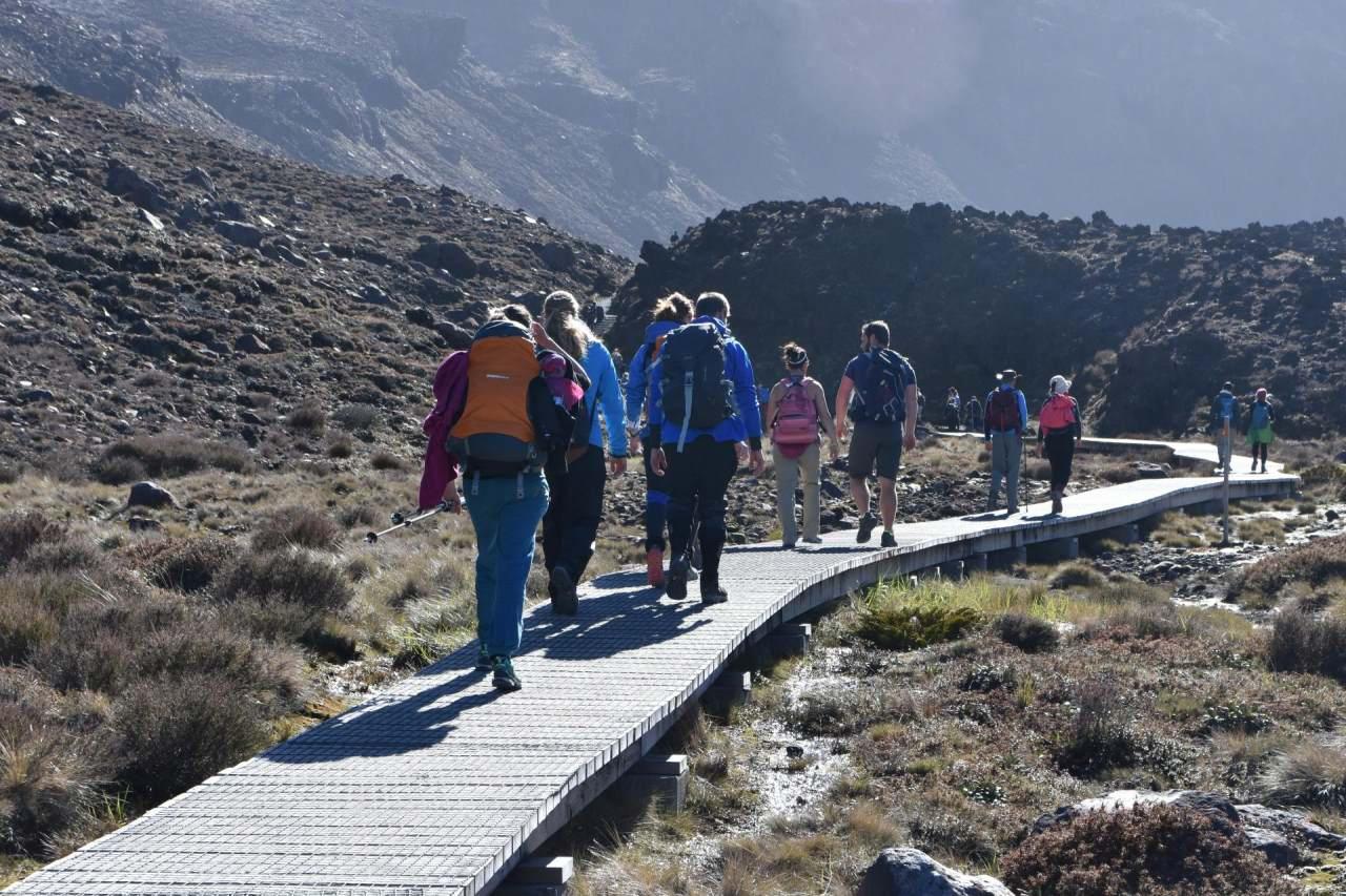Tongario Alpine Crossing Holzplankenweg
