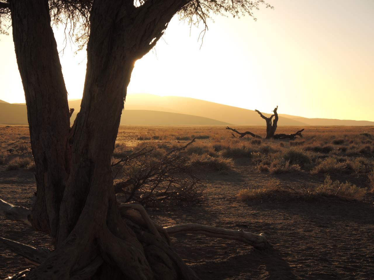 Sonnenuntergang Sousousvlei