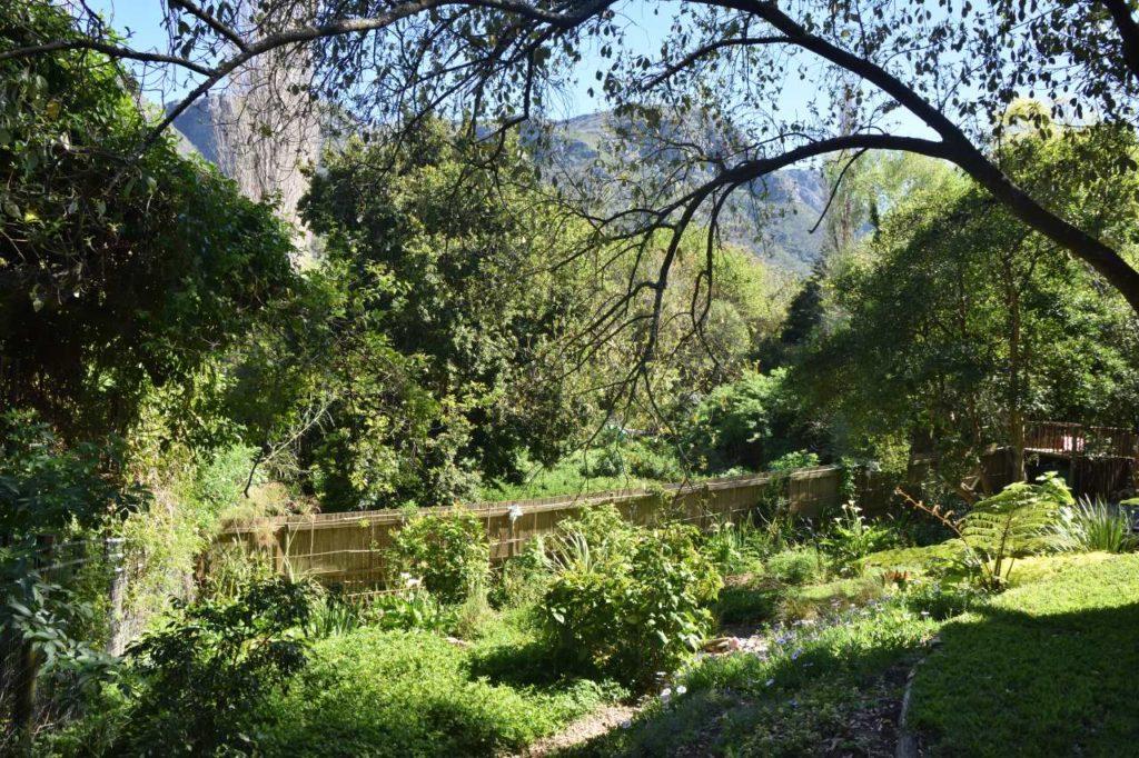 Garten des Tree House in Hout Bay